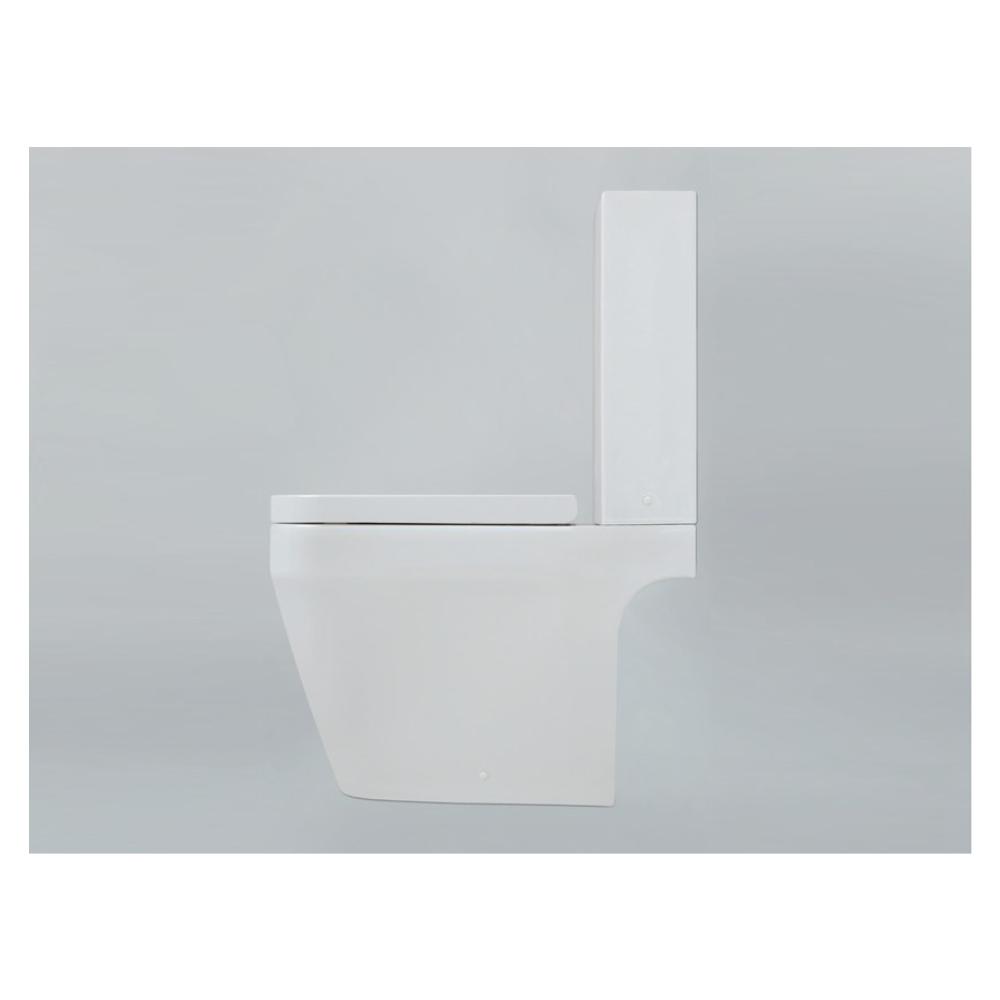 vas wc monobloc minimalist tulip azzurra